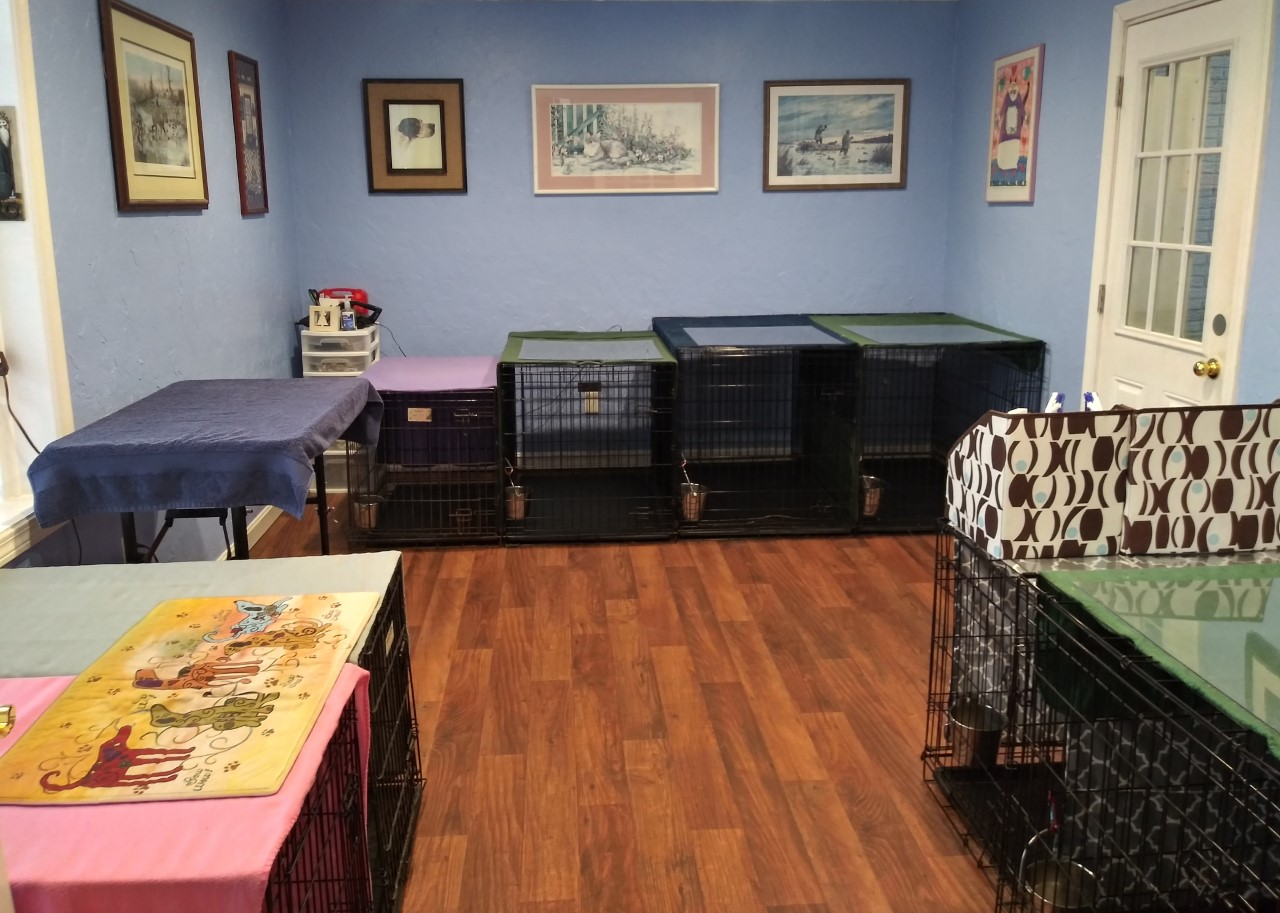 Doggy Daycare and Boarding Bank of sleeping dens for napping or overnight guests